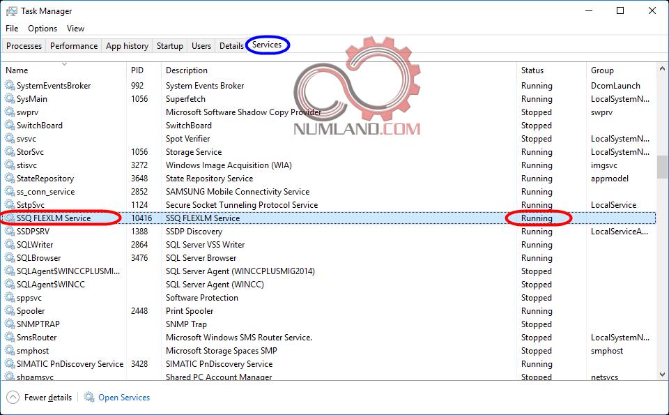 بررسی نصب درست Flexnet Licensing Service
